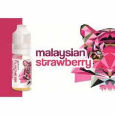 Malaysian Strawberry Concentré