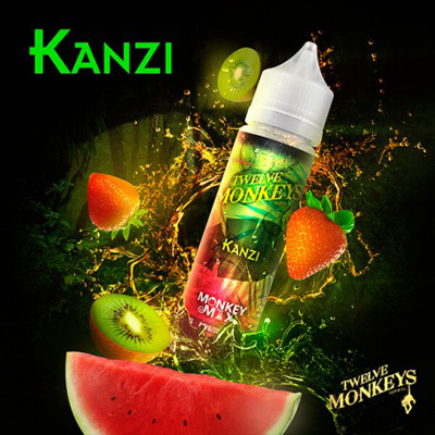 Kanzi | Twelve Monkeys