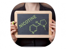 La nicotine, les notions clefs